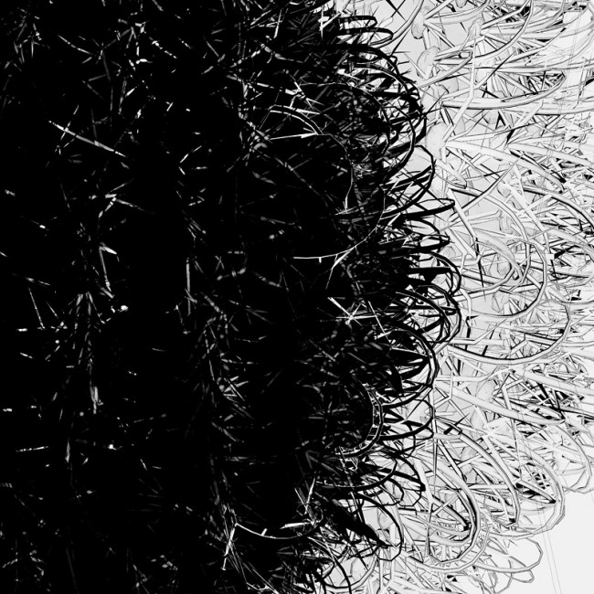 ©Sandra Filippucci Cactus prints